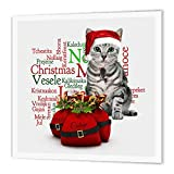 Christmas Tabby Cat with Mouse in a Santa Hat Iron on Heat Transfer