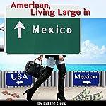 American Living Large in Mexico: Making Money, Saving Money, Having Fun |  Bill the Geek