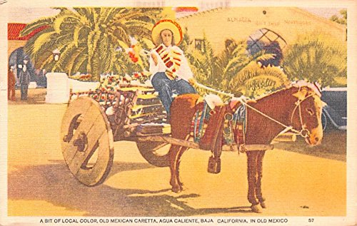 Local Color, Old Mexican Caretta Baja Mexico Postcard ...