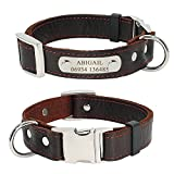 Didog Soft Genuine Leather Plain Custom Dog Collar with Engrave Nameplate ID Tag,Personalized Leather Pet Collars for Small Medium Dogs,M Size