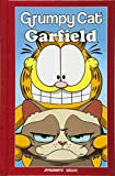 Grumpy Cat & Garfield