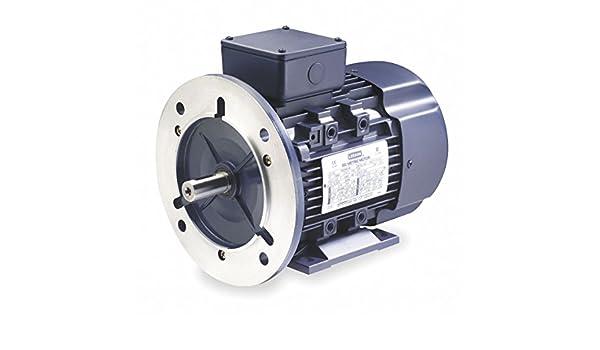 3-Phase 3455 Nameplate RPM Frame 230//460 Voltage Leeson 2 HP Metric Motor