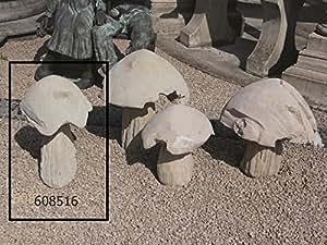 Seta de piedra 2h 56, gris claro