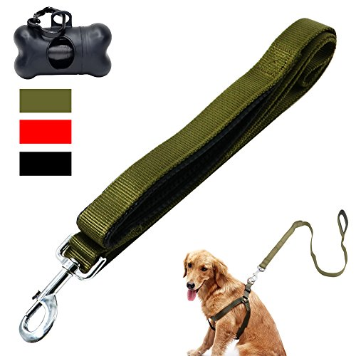 Dog Leash 2 Handles, Heavy Duty Dog Leashes with Premium Nylon Dual Padded Handles , 4ft Long for Extra Control – Great for Medium to Large Dog in Traffic/Walking/Training ( Light Green)