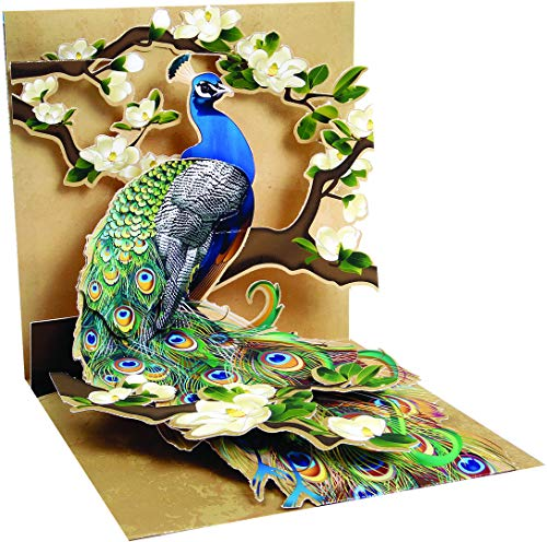 1 X Pop - Up Greeting Card (Peacock and Magnolias) ()
