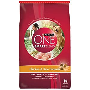 Purina ONE SmartBlend Dry Dog Food, Chicken & Rice Formula, 31.1-Pound Bag, Pack of 1