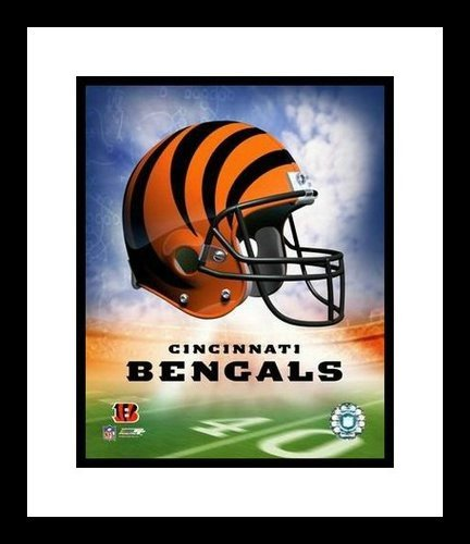 Cincinnati Bengals Framed 8x10 Photo - Team Logo and Helmet Collage