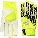Ace Junior Goalie Glove
