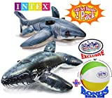 """Intex Inflatable Pool Floats Realistic Great White Shark Ride-On (68""""x42"""") & Realistic Whale Ride-On (79""""x53"""") Gift Set Bundle with Bonus """"Matty's Toy Stop"""" 16"""" Beach Ball - 2 Pack"""