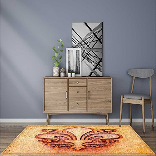 Stain Resistant Grungy Lily Retro Renaissance Spirit Element Victory Holy Artwork Rug for Kitchens W24 x L35.5 INCH by SCOCICI1588