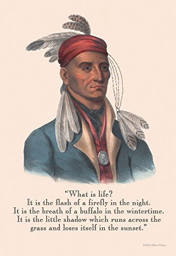 Life is a Flash of a firefly the breath of a buffalo and the shadow that runs across the grass Poster Print by Proverb Native American (18 x 24)
