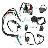 YaeTool Complete Electrics Stator Coil CDI Wiring Harness Kit CDI Wire Assembly for 4 Stroke ATV KLX 50cc 70cc 110cc 125cc Quad Bike Buggy Go Kart