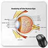 BGLKCS Educational Mouse Pad by, Human Eye Anatomy Cornea Iris Pupils Optic Nerves Graphic Print, Standard Size Rectangle Non-Slip Rubber Mousepad, Coral Mustard Baby Blue