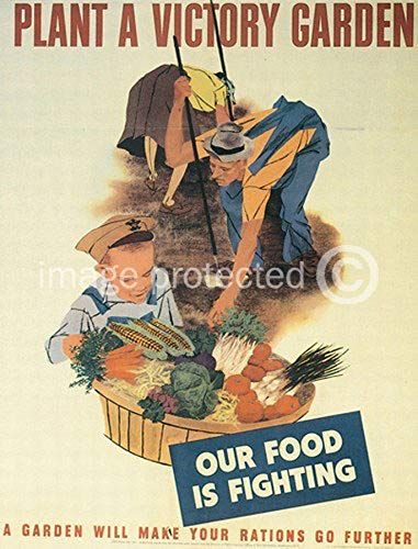 AGS - Plant a Victory Garden Vintage World War II Two WW2 WWII USA Military Propaganda Poster - 24x36