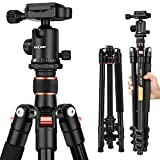 "Camera Tripod, K&F Concept 62"" Professional Aluminum Tripod with Ball Head and Quick Release Plate for DSLR (Canon, Nikon, Pentax, Sony, Leica, Fuji, Lumix, Olympus) Light-Weight"