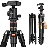 K&F Concept TM2324 Compact and Lightweight Aluminum Tripod with 360° Ball Head for Digital Camera (Orange)