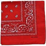 Raylarnia Novelty Bandanas Paisley Cotton Bandanas-Red