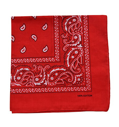 Raylarnia Novelty Bandanas Paisley Cotton Bandanas-Red -