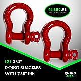 Rhino USA D Ring Shackle (2 Pack) 41,850lb Break