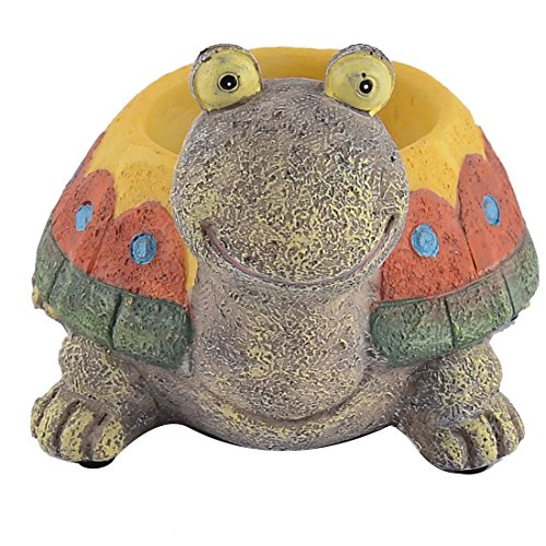 Turtle Holds - 9