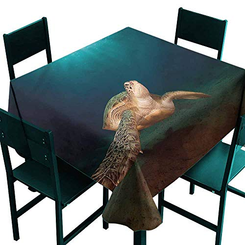 DONEECKL Restaurant Tablecloth Turtle Green Turtle Sunbeam Washable Tablecloth W60 xL60
