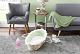 Baby Moses Basket with Liner, Sheet, and Pad