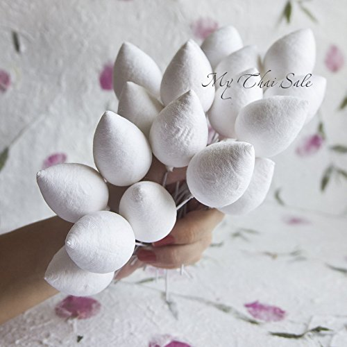 20 pcs Flower Bulbs Drop Shaped (32 mm) (Styrofoam Rose Cones compare prices)