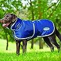 Weatherbeeta Parka 1200D Deluxe Dog Coat by Weatherbeeta