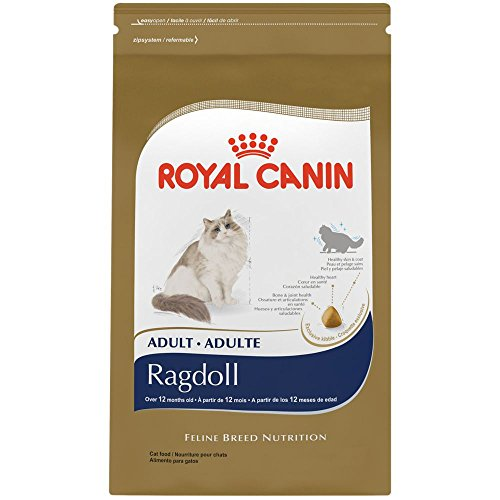ROYAL CANIN BREED HEALTH NUTRITION Ragdoll dry cat food, 7-Pound 51MmgYhxa2L