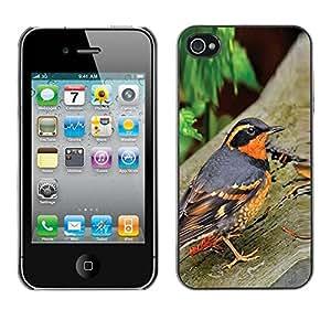 Paccase / SLIM PC / Aliminium Casa Carcasa Funda Case Cover para - spring nature bird trees summer orange - Apple Iphone 4 / 4S