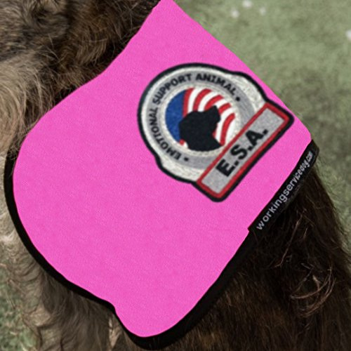 Working Service Dog Brand - Premium ESA Dog Vest - For Smaller Emotional Support Animals (4-7 Pounds, Raspberry) by Working Service Dog (Image #7)