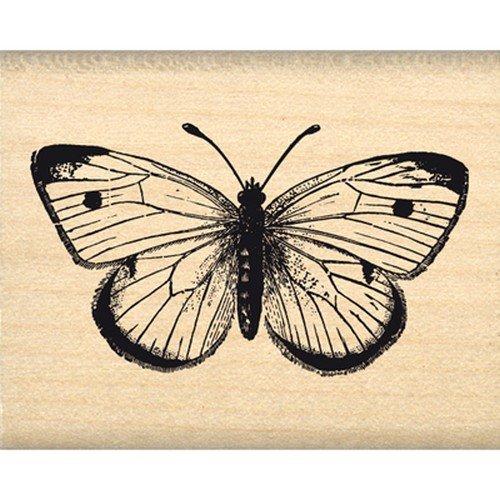 Florilèges Design FC114005 Stempel Scrapbooking schönes Schmetterling-Beige, 4 x 5 x 2,5 cm
