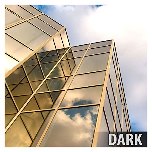 BDF PRGD Window Film Premium Color High Heat Control and Daytime Privacy Gold (24in X ()