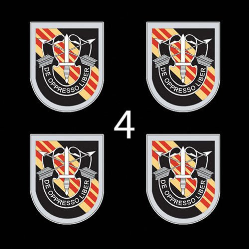 US Army Flash 5th Special Forces Group Vietnam DUI 3