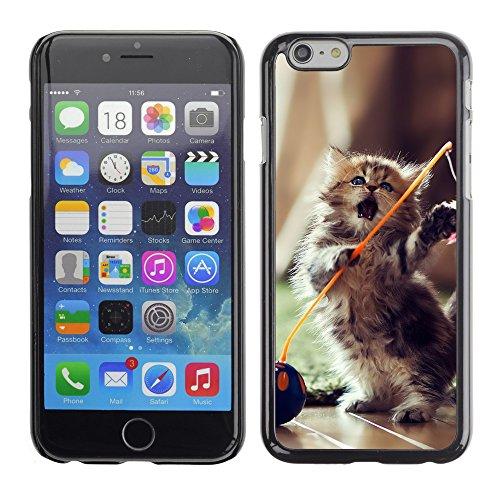 """Premio Sottile Slim Cassa Custodia Case Cover Shell // V00003612 belle chaton ludique // Apple iPhone 6 6S 6G PLUS 5.5"""""""