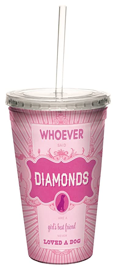 16-Ounce Tree-Free Greetings 98172 Angi and Silas Girls Best Friend Double-Walled Cool Cup with Reusable Straw