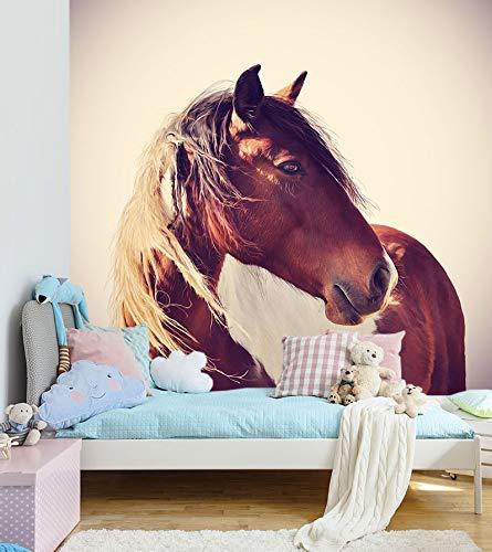 Selbstklebende Fototapete - Pferd Pferd Pferd Portrait - 200x200 cm - Wandtapete – Poster – Dekoration – Wandbild – Wandposter - Bild – Wandbilder - Wanddeko B07N833XW5 Wandtattoos & Wandbilder cb9515