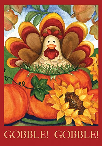 Toland - Autumn Turkey - Decorative Thanksgiving Fall Holiday Pumpkin USA-Produced House Flag