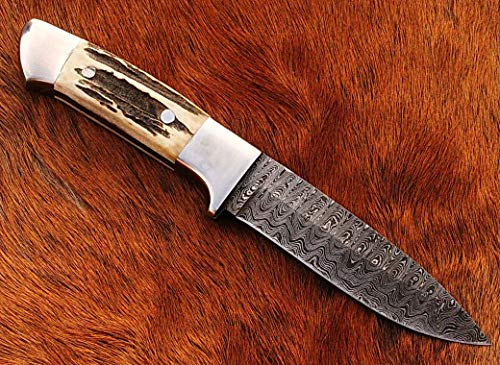 (Hunting Knife, Ladder Pattern Damascus Steel, Stainless Steel Bolsters, Indian Sambar Stag Handle.)