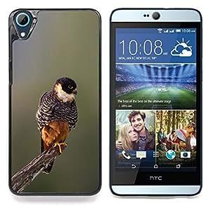 """Pájaro de bebé de primavera Naturaleza borrosa Branch"""" - Metal de aluminio y de plástico duro Caja del teléfono - Negro - HTC Desire 626 626w 626d 626g 626G dual sim"""