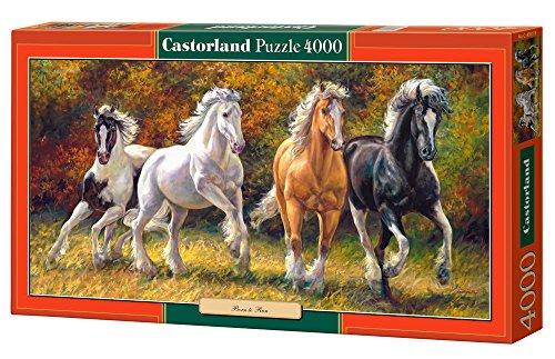 Castorland - Born To Run 4000 piece panoramic puzzle
