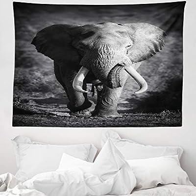 ABAKUHAUS Elefante Tapiz de Pared y Cubrecama Suave, Elefante ...