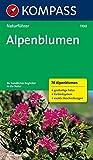 Alpenblumen: Sehen und verstehen (KOMPASS-Naturführer, Band 1100)