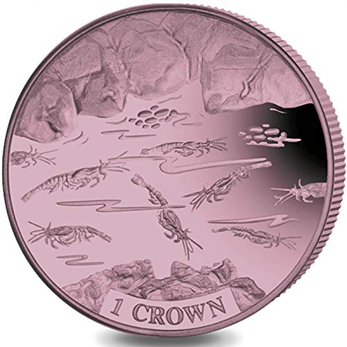 SHRIMP - Dusky Pink Titanium Coin in Box with Certificate of Authenticity - 2018 Ascension Island 1 Crown Coin