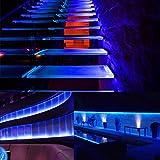 33ft LED UV Black Light Strips, 12V Flexible LED