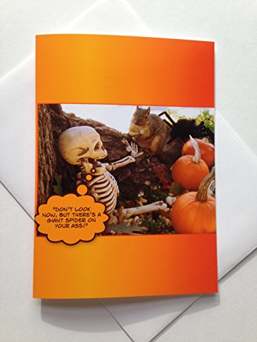 Adult Halloween Cards (Halloween Card - Funny Halloween Card - Halloween Squirrel Card - Funny Skeleton Card - Adult Halloween Card - Seasonal Card)