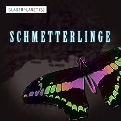Schmetterlinge (Blauer Planet 3)