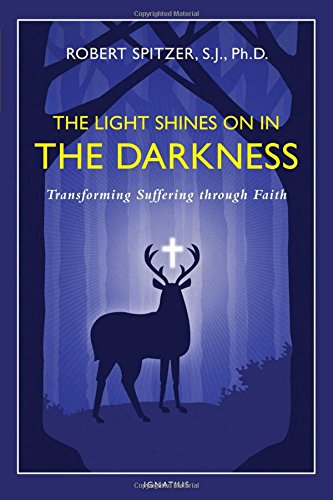the-light-shines-on-in-the-darkness-transforming-suffering-through-faith-happiness-suffering-and-tra