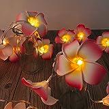 AceList 20-LED String Light Hawaiian Foam Artificial Plumeria Flower Battery Powered Fairy Starry Lights for Wedding Beach Party-Pink