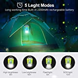 Camping Lantern Flashlight Bug Zapper 3-in-1